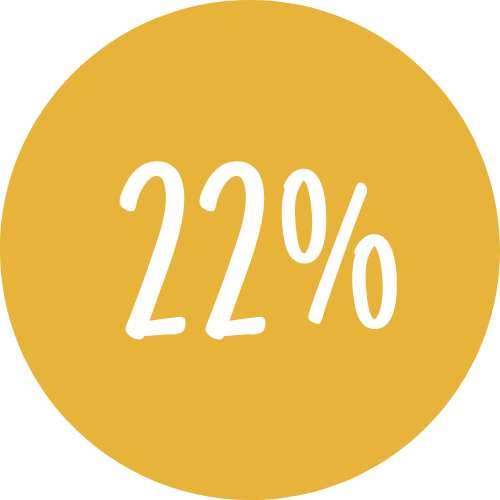 Icon showing 22%